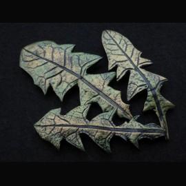 Taraxacum bross